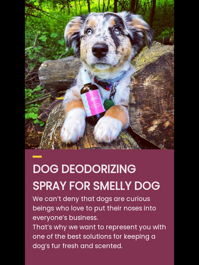 Natural dog deodorant spray