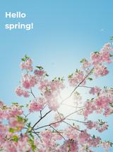 Spring flowers story